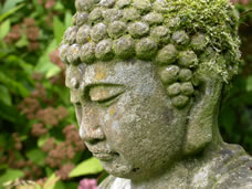 head of stone buddha